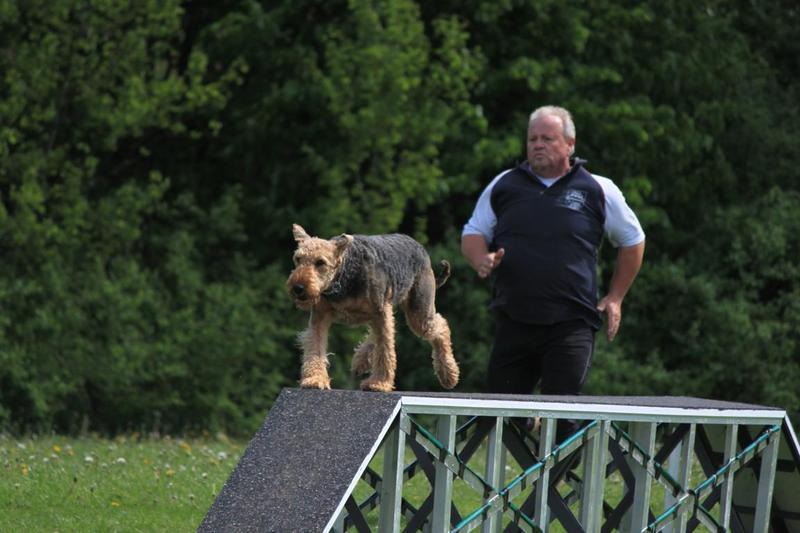 Hundesportverein Güstrow